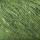 Grass T10