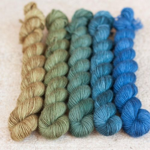Snailyarn Gradients Yarn Neptune